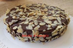 Torta reine de saba di Julia Child copia