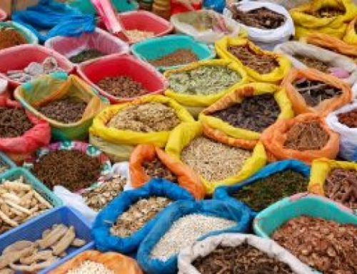 Oggi è la Giornata Mondiale dell'Alimentazione