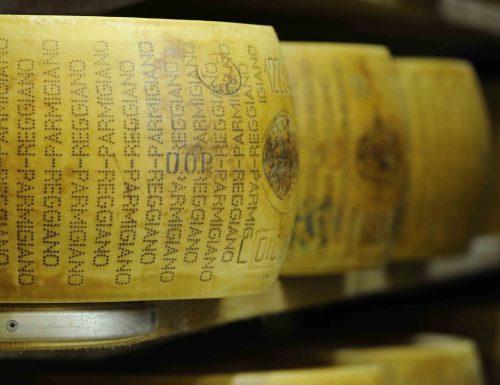 Parmigiano e Grana: falsi superano gli originali