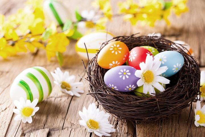 Pasqua (2)